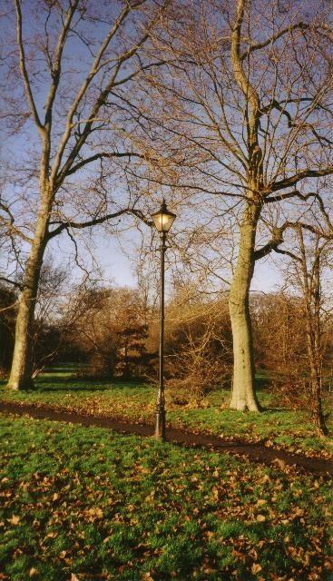 Autumn Lamppost