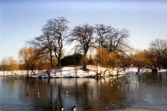 Mount Pond in winter