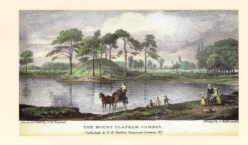 The Mount Pond