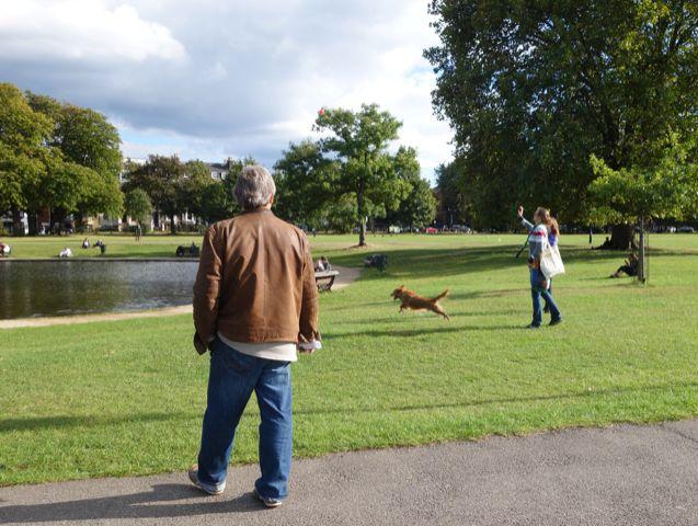 2020-07 litter-pick Clapham Common